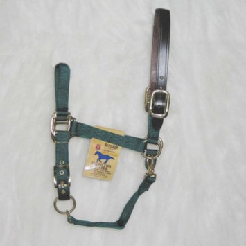 Hamilton Halter Company Adjustable Halter with Leather Headpole