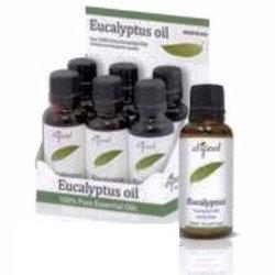 Sunflower Natural Essential Oil, Eucalyptus, 1 Oz
