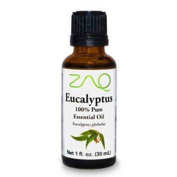 ZAQ Eucalyptus 100% Pure Aromatherapy Essential Oil, 1 Fl Oz Bottle