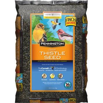 Pennington Thistle Seed Wild Bird Feed, 5 lbs