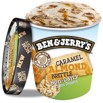 Ben & Jerry's Non Dairy Caramel Almond Brittle Frozen Dessert - 16oz