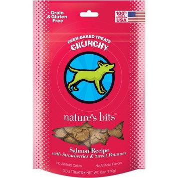 Nature's Bits Dog Treats 6oz-Salmon Crunchy