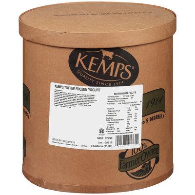 Kemps® Toffee Frozen Yogurt 3 gal. Tub