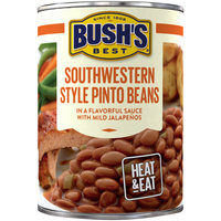 Bush's Best® Southwestern Style Pinto Beans 15.4 oz. Can