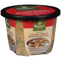 Panera Bread® Chicken, Kale & Sweet Potato Soup 16 oz. Microwavable Bowl