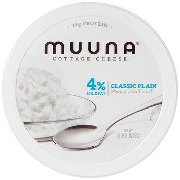 Muuna® 4% Milkfat Classic Plain Cottage Cheese 16 oz. Tub