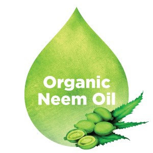 InstaNatural Organic Neem Oil? For Hair, Face, Skin & Body? Best 100% Pure.