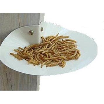 Erva FFD1 Dish Feeder - Tan Over Galvanized steel