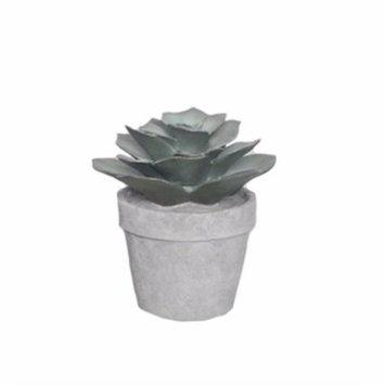 Benzara Resin Desert Rose Succulent Plant, Green And Gray