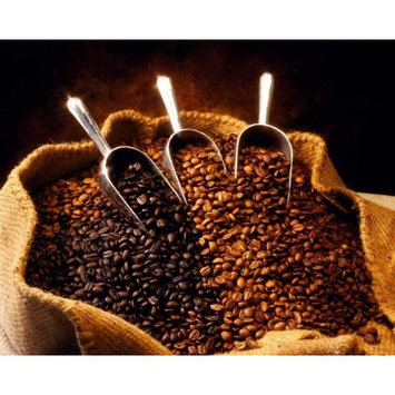Papua New Guinea Organic Estate Coffee Beans (Light Roast (City), 10 Pounds Whole Beans)