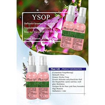 Plant Gift Advanced organic - Hyssop Hydrolat 100% pure, Skin moisturizing, improve skin metabolism-50ml(1.7oz)