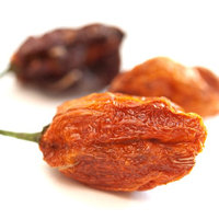 Spicejungle Habanero Chile Peppers, Whole - 1 oz.