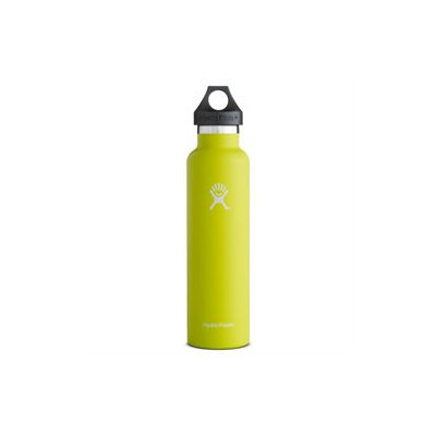 Hydro Flask 24oz Standard Mouth Vacuum Insulated Stainless Steel Water Bottle w/Loop Cap