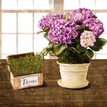 Ptm Thyme and Purple Flowers