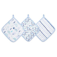 aden® by aden + anais® 3-Pack Washcloths in Dino Green