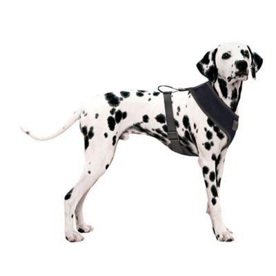 Mesh Large Dog Harness in Black