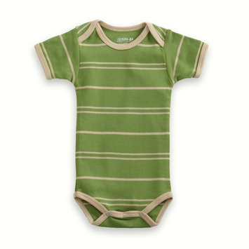 Organic Baby Clothes - T-Shirt Baby Body - Green/Vanilla Stripe 3-6