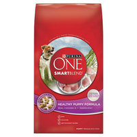 PURINA ONE® SmartBlend Healthy Puppy Formula Puppy Premium Dry Dog Food