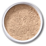 EX1 Cosmetics Pure Crushed Mineral Powder Foundation - 1.0