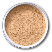 EX1 Cosmetics Pure Crushed Mineral Powder Foundation - 3.0