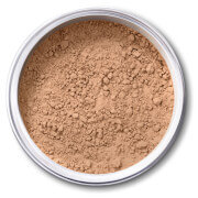 EX1 Cosmetics Pure Crushed Mineral Powder Foundation - 3.5