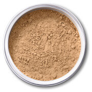 EX1 Cosmetics Pure Crushed Mineral Powder Foundation - 5.0