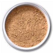 EX1 Cosmetics Pure Crushed Mineral Powder Foundation - 6.0