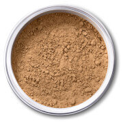 EX1 Cosmetics Pure Crushed Mineral Powder Foundation - 8.0