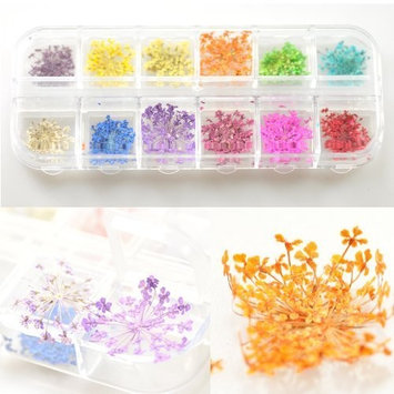 12 Colors Real Dry Dried Flowers Decoration Nail Art Sticker DIY Tips