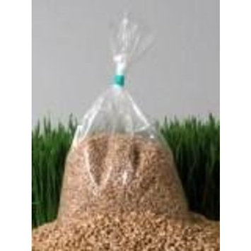 Chemical Free Hard Red Wheat Seed - 10 Lbs - Plant & Grow Wheatgrass, Grind to Make Flour & Bread, Store for Emergency Food Storage - Excellent Germination Rate - Wheat Grass Juice