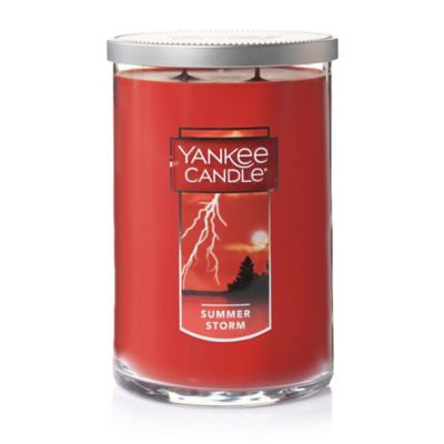 Yankee Candle Summer Storm 2-Wick Large Tumbler Candle