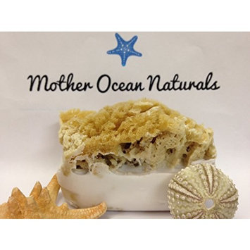 Goat's Milk Soap and Olive Oil Soap Bar with Attached Natural Organic Sea Sponge. *Hand Crafted in Florida* *All Natural Moisturizing Soap* Great Gift! Perfect Shower Sponge! All Natural Bath Sponge and Natural Bath Bar. *The Best Sea Sponge Soap Combination* Several Amazing Scents. (Caribbean Fruit)