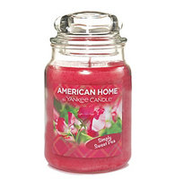 YANKEE CANDLE American Home™ Large Jar Candle Simply Sweet Pea