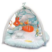carter's® Under the Sea Large Playgym