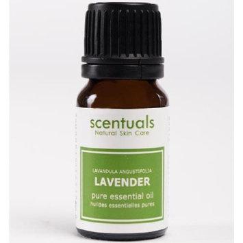 Scentuals 100% Pure Essential Oil 10 ml - Lavender
