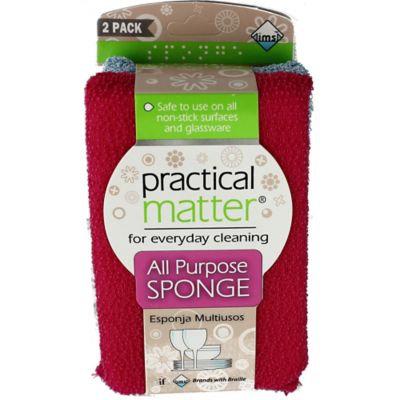 Practical Matter® All-Purpose 2-Pack Sponges