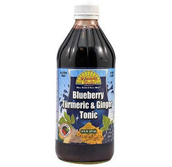 Dynamic Health Laboratories Dynamic Health - Turmeric and Ginger Tonic Blueberry - 16 oz.