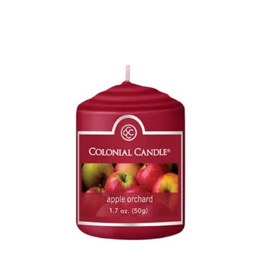 Classic Wax CC015.1135 Votive Apple Orchard Candles Pack of 18