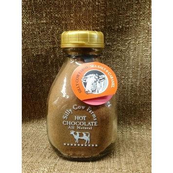 Sillycow Hot Cocoa Sslt Crml [Chocolate Caramel & Sea Salt]