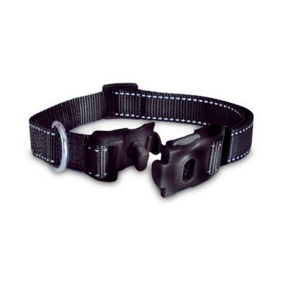 ThunderCollar® Medium Pet Collar in Black with Tag Silencer