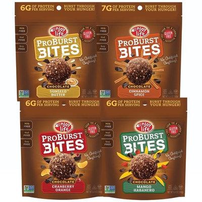 Enjoy Life Protein Bites, Soy free, Nut free, Gluten free, Dairy free, Non GMO, Vegan, Variety Pack (Cinnamon Spice, SunSeed Butter, Cranberry Orange, Mango Habanero), 4 Bags