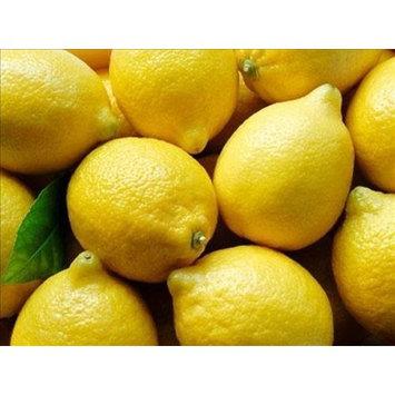 Organic Lemons - 17-20 Lb Case