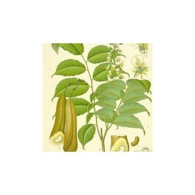 Peru Balsam (resin) 50ml