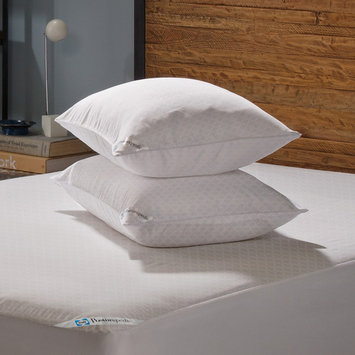 Sealy Stain Release Zippered Pillow Protectors 2-Pack - White (Standard/Queen), Variation Parent