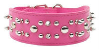 Mirage Pet Products 8307 27Pk Foxy Rodeo Pink 27