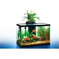 AquaDuo LED Aquarium Kit, 20-Gallon