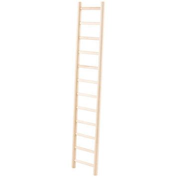 All Living Things® Parrot Ladder size: 24 in