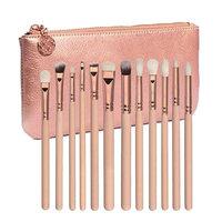 Leoy88 12 pcs Rose Gold Makeup Brush Complete Eye Lip Set Tools Concealer Powder Blending Brush With Cosmetic bag (Rose G