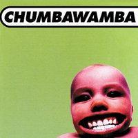 Chumbawamba ~ Tubthumper (used)