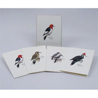 Steven M. Lewers & Associates LEWERSNC46 Peterson's Woodpecker Notecard Assortment (2 each of 4 styles)